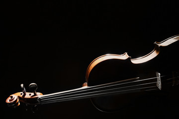 Violin orchestra music instrument isolated