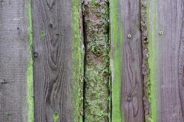 Hintergrund altes Holz