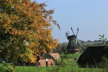 Freilichtmuseum mit historischer Holländer Windmühle im Herbst