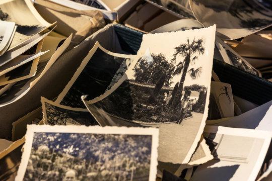 Old Box of Photos Edges Worn Collection Vintage History Family Nostalgia