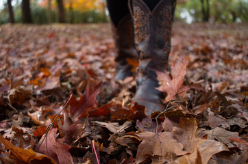 Boots Walking Through Fall Leaves