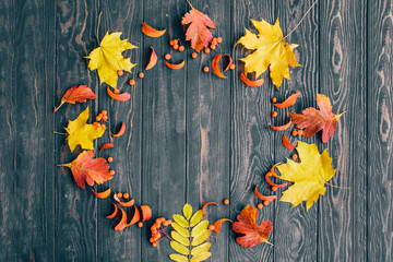 Wall Mural - autumn background on wooden background