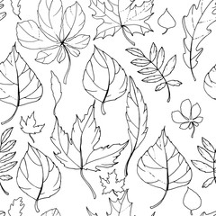 Seamless pattern with autumn leaves. Endless texture with black and white contour elements. White background.