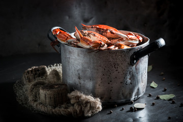 Foto op Canvas Schaaldieren Boiled fresh crab with allspice and bay leaf