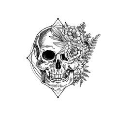 Halloween floral vintage skull illustration. Human skeleton. Vector illustration