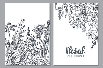 Fototapeta Floral backgrounds with hand drawn herbs and wildflowers.