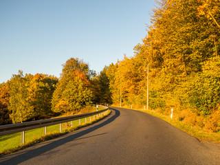 goldene Herbstbäume säumen Landstraße