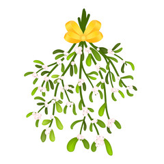 Mistletoe bunch with yellow ribbon isolated on a white background