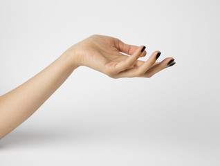 Female hand isolated on white background. Shallow depth photography.