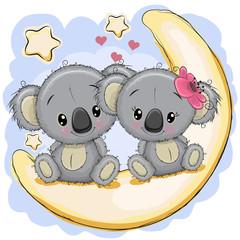 Two Cute Koalas is sitting on the moon