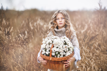 A beautiful child is standing in the field and holding a wicker basket with white chrysanthemums.