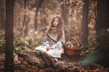 A beautiful little girl is sitting on an old log in a dense forest. The child sits on an old deck, next to it there is a full basket of mushrooms. Tinting photos.