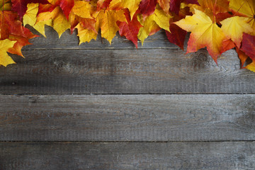 Autumn leaves frame on wooden background