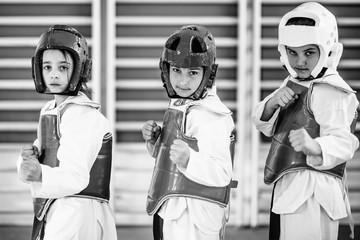 Taekwondo kids posing