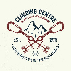 Vintage typography design with carabiners, condor and mountain silhouette.