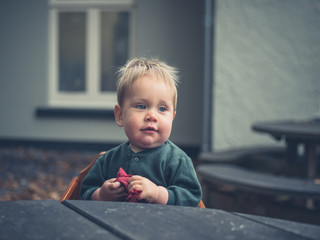 Baby sitting at table outside in autumn
