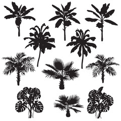 Tropical Plants Silhouette Set