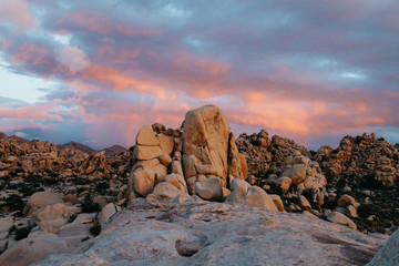 landscape view of joshua tree rocks at sunrise