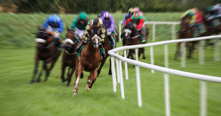 Race horses and jockeys racing fast around the turn of the track with motion blur effect