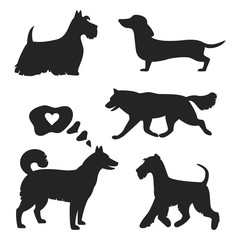 Set of dog silhouettes on the white background.