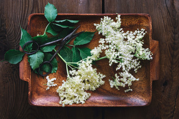 Freshly picked elderflower on wooden table