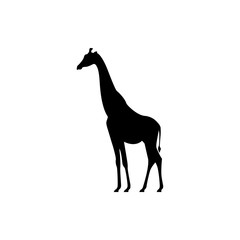 Vector giraffe silhouette view side for retro logos, emblems, badges, labels template vintage design element. Isolated on white background