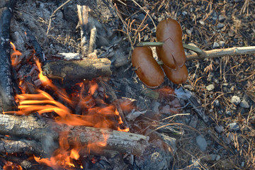 Sausages barbecue on the stick above the fire in the nature