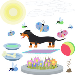 abstract illustration of a Dachshund dog with toys on a white background