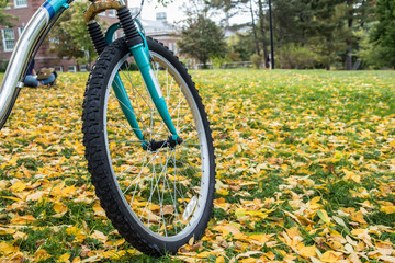 Close up of a front wheel of a bicycle with beautiful fall foliage
