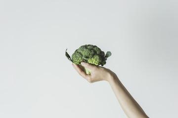 Hand holding broccoli