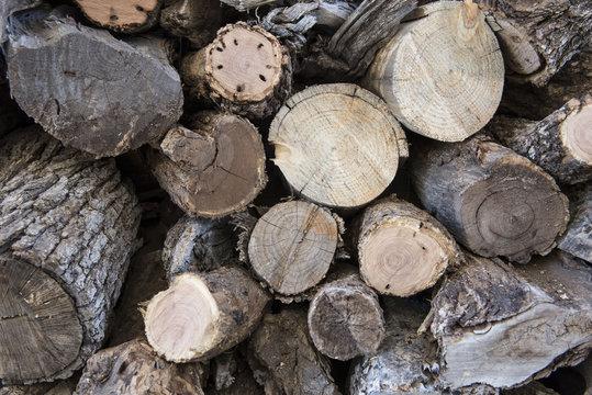 Mesquite Firewood 1