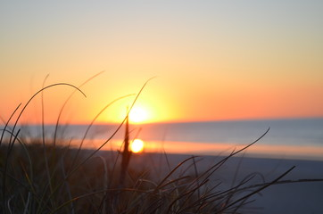 Sonnenuntergang mit Dünengras