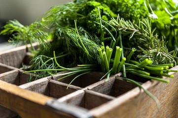Fresh Herbs in Crate