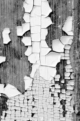 closeup macro microphotograph black and white paint chipping peeling exterior old wood door