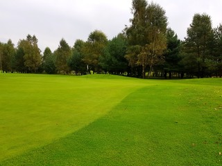 Golf course during summe