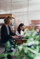 Two Young Women Working on Laptops in Bright Stylish Office Space