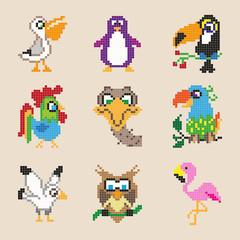 Set of different pixel cartoon birds. Vector illustration