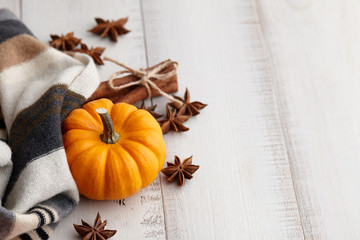 Pumpkin latte ingredients: small orange pumpkin with cinnamon and star anise on white wooden background, copyspace