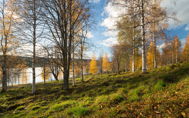 Autumn scene from Sweden with trees and a lake in the background