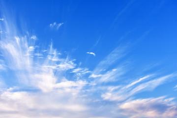 早朝の青空