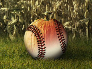 Half Baseball Half Pumpkin in Fall Setting