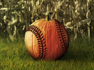 Baseball Pumpkin in Fall Setting