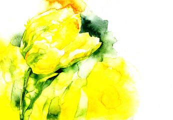 Yellow, beautiful, garden, decorative tulip. Spring, summer, feminine, first, purple flower. A fragrant, fresh, beautiful flora. Watercolor. Illustration