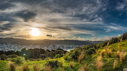View of downtown Wellington New Zealand from Mount Victoria Lookout during sunset