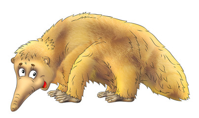 image of anteater