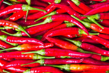 Thin red peppers on a pile background