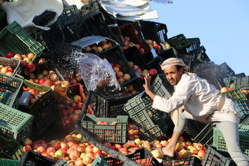 A man tries to move the remaining pomegranate fruits after a Saudi-led air strike in Saada