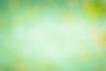 Abstract green blurred background or texture.
