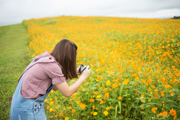 Asian girl take photo blooming yellow flowers, Travel concept