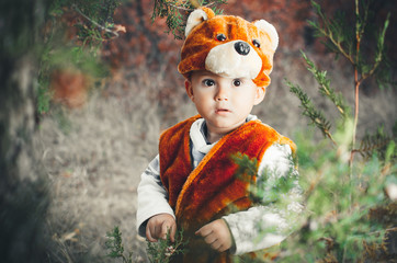 portrait of a baby in a bear costume in the woods